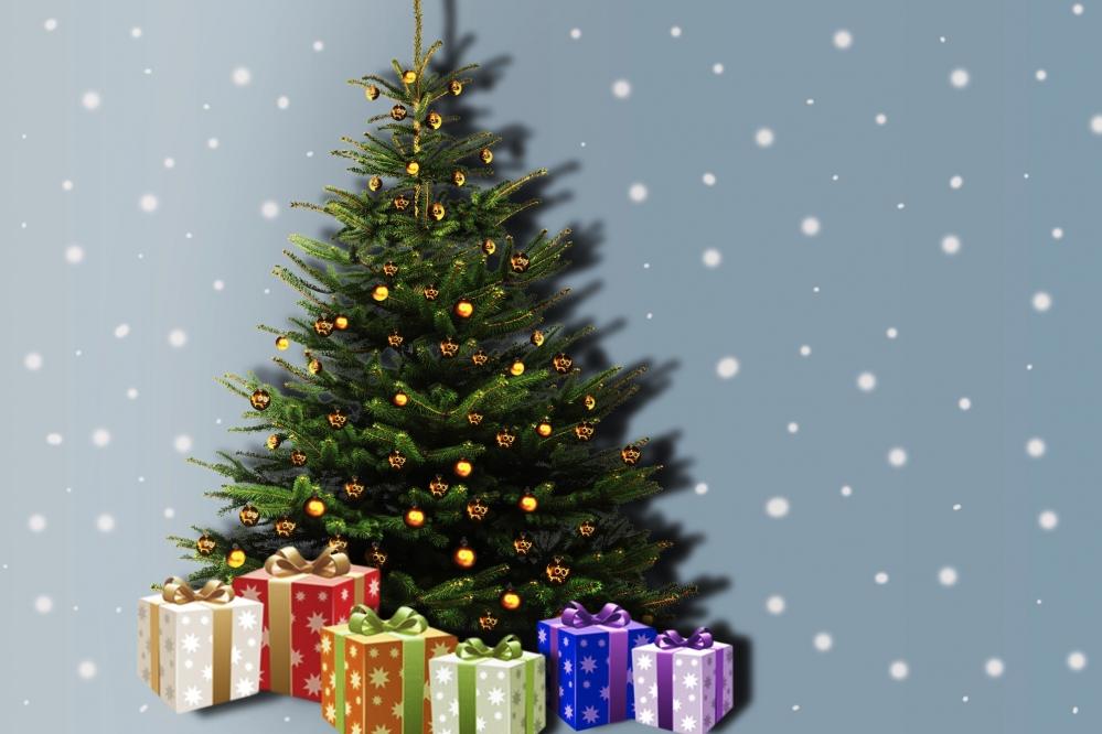 photocall, arbre de noel, pere noel