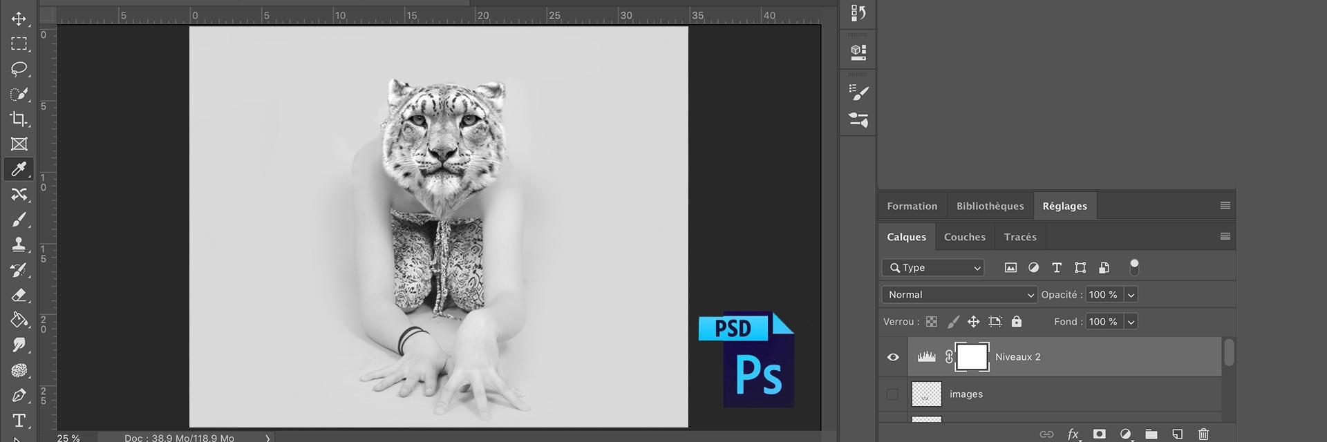 Perfectionnement Photoshop (éligible CPF / à distance)