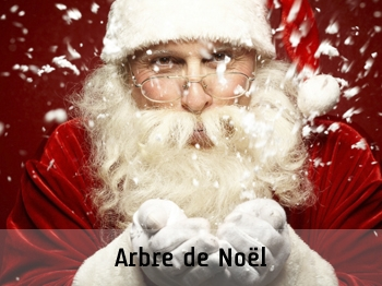 animation photo, animation evenementielle, animation photocall, arbre de noel